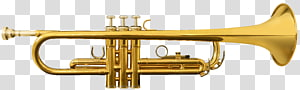 Piccolo trumpet Musical Instruments Brass Instruments Cornet, trumpet and saxophone PNG