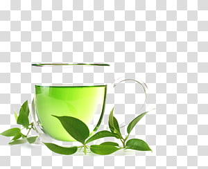 Green tea Organic food White tea Oolong, Cups and green leaves on wood PNG clipart