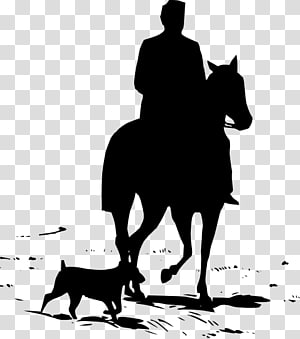 Tennessee Walking Horse Equestrian Silhouette , western PNG