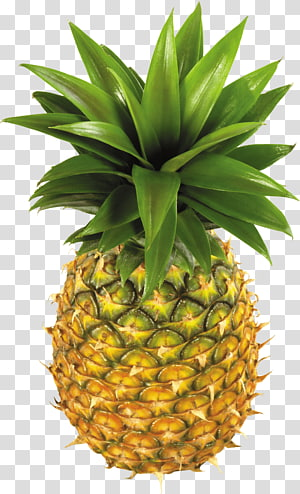 Pineapple Fruit , Pineapple Fruit PNG