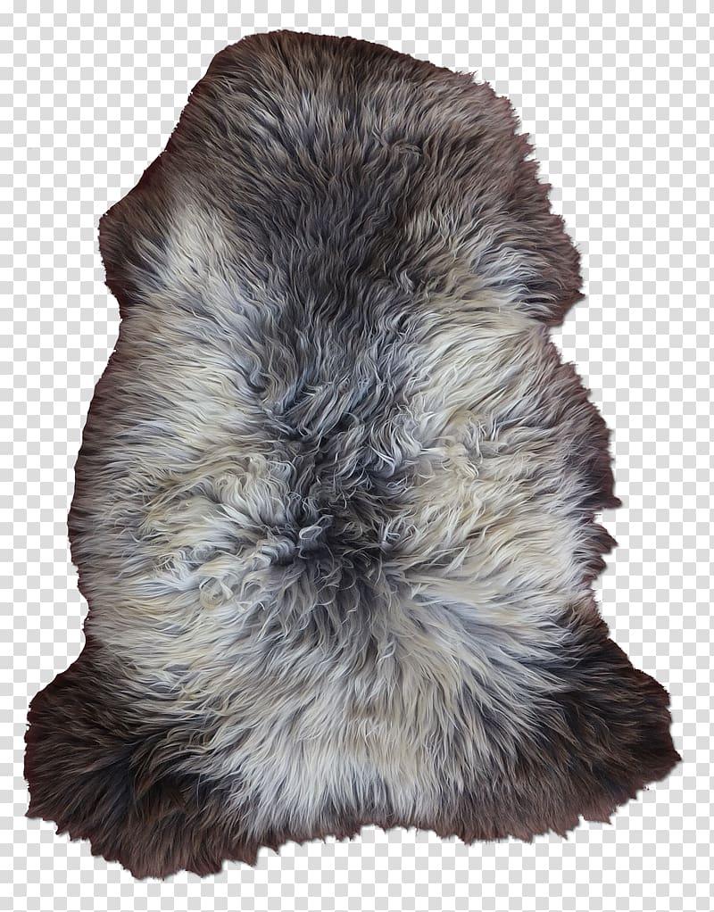 Fur Snout Mouton Png Clipart Clipartsky