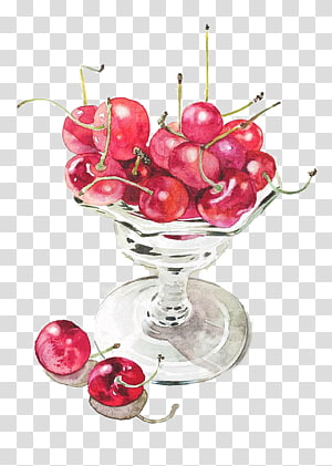 cherries illustration, Paper Watercolor painting Drawing, Cherry PNG