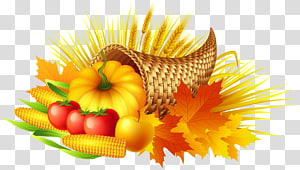 Thanksgiving Cornucopia , thanksgiving PNG clipart