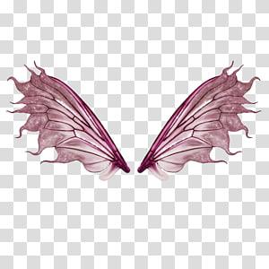 purple butterfly wings PNG