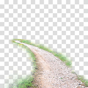 grasses beside road, Take Me Home, Country Roads , Country road PNG clipart