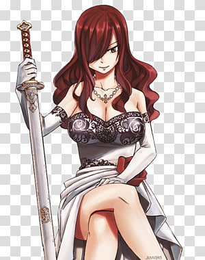 Erza Scarlet Natsu Dragneel Wendy Marvell Juvia Lockser Fairy Tail, fairy tail PNG