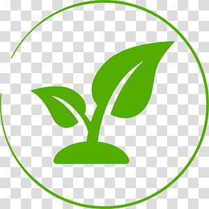 Seedling Leaf Garden Soil, Leaf PNG