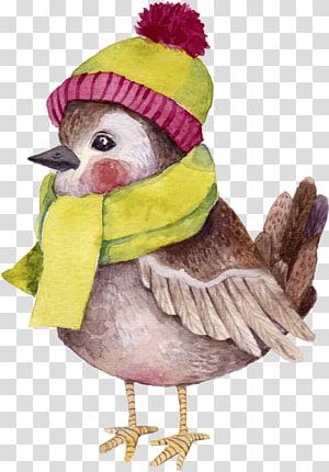 Bird Beak Drawing DekorLoft , Bird PNG