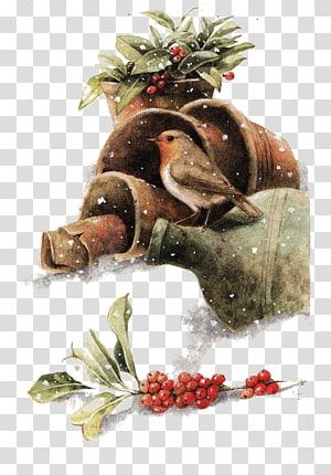 Bird Painting Drawing Christmas Illustration, Winter Birds PNG
