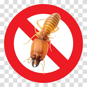 Zazzle Sticker Sign Symbol, Big D Pest And Termite Services PNG