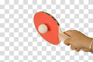 person holding red table tennis racket, Ping Pong Playing PNG