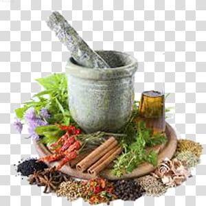 Herbalism Dietary supplement Traditional medicine, ayurvedic medicine PNG