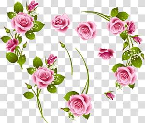 Flower, flower PNG