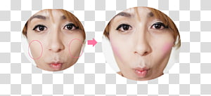 Snout Cheek Chin Jaw Mouth, Eye PNG clipart