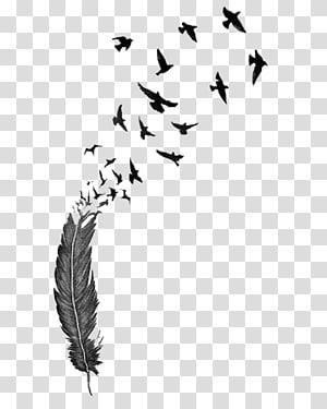 Bird Feather Tattoo Drawing , Bird PNG