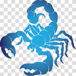 Scorpio Astrological sign Astrology , scorpio PNG clipart