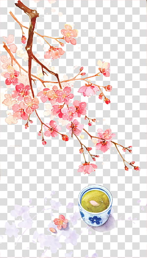 China Watercolor painting Qingming Illustration, Chinese antiquity beautiful watercolor illustration, pink cherry blossom flowering tree and tea PNG