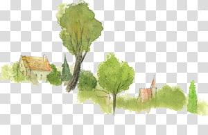 Watercolor painting Leaf vegetable Desktop , childhood memories PNG