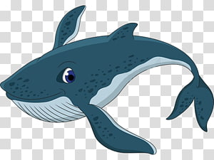 Blue whale, whale PNG clipart
