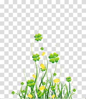 Four-leaf clover Green, Green Clover PNG clipart