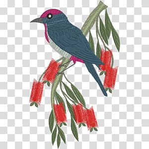 Bird Machine embroidery Parrot, capped PNG