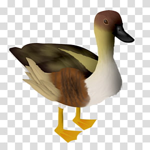 Goose, goose PNG
