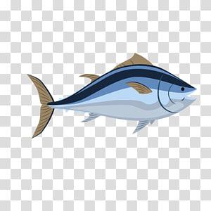 Shellfish Vecteur Drawing, cartoon fish PNG clipart