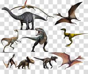all kinds of dinosaurs PNG clipart