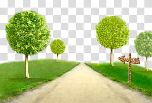 Tree, Trees creative green grass PNG