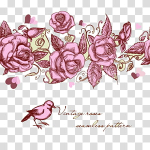 Rose , rose,Rose,flower PNG