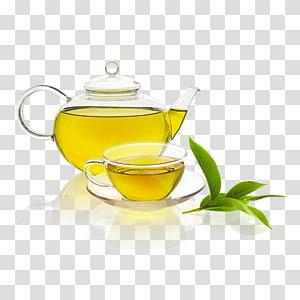 Green tea Herbal tea Vegetarian cuisine Tea plant, green tea PNG