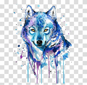 Gray wolf Tattoo Watercolor painting Drawing, Abstract wolf, blue and purple wolf painting PNG