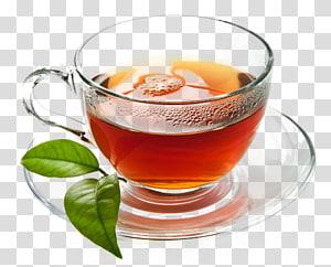 Maghrebi mint tea Beer Green tea Mint julep, tea PNG