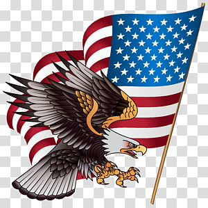 flag of United States and American Eagle , United States T-shirt American Eagle Outfitters Clothing Jersey, American Eagle PNG clipart