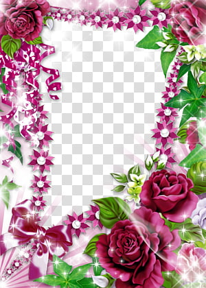 pink and green rose frame illustration, frame Collage , Purple Peony border PNG
