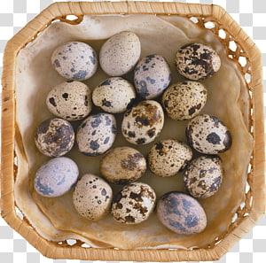 Quail eggs Common Quail Food, Egg PNG clipart