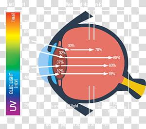 Ping Pong Paddles & Sets Graphic design, ping pong PNG clipart