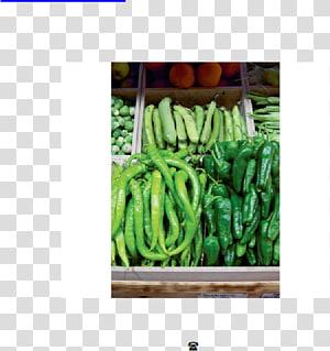 Organism Vegetable, vegetable PNG clipart
