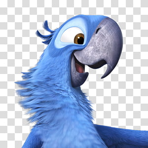 Rio character, macaw parrot wing snout parakeet, Rio2 Blu PNG clipart