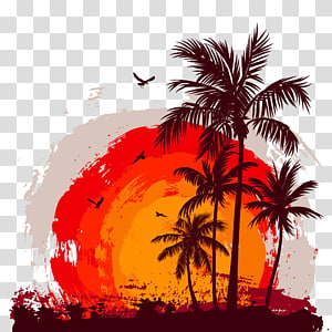 coco sunset material PNG