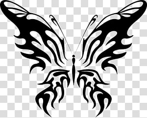 Butterfly Insect Line art , ink butterfly PNG
