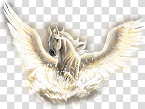 Horse Pegasus Poseidon Legendary creature Unicorn, horse PNG