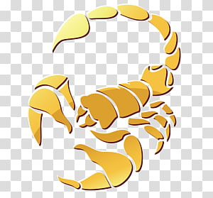 Scorpion Astrological sign Astrology Dungeness crab, Scorpion PNG