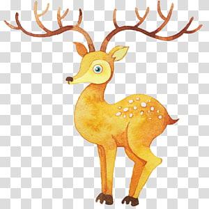 Watercolor painting Illustration, Watercolor deer PNG clipart