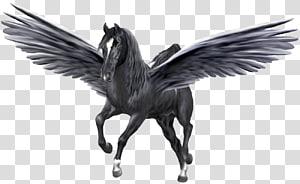 Medusa Pegasus Poseidon Desktop Unicorn, pegasus PNG