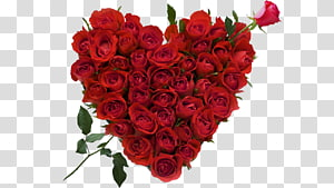 Rose Flower bouquet Heart Valentine\'s Day, 8 PNG clipart