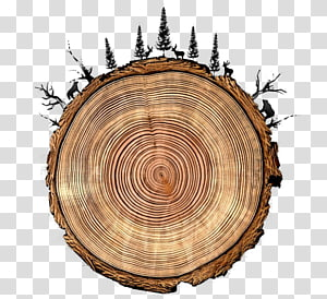 tree rings round tree animals PNG