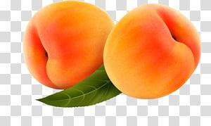 Peach Fruit , Peach fruit peaches PNG clipart