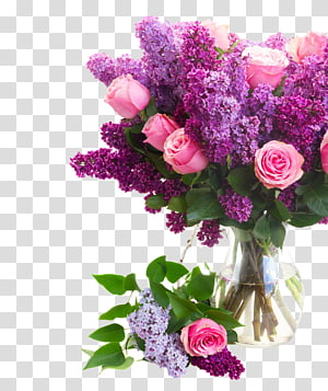 pink roses, Flower Rose Pink , Roses and lilac PNG