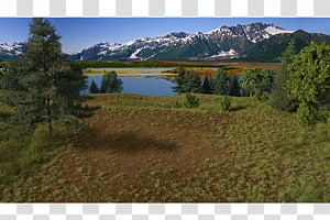 Rendering Wilderness Nature reserve 3D computer graphics, nature scene PNG clipart